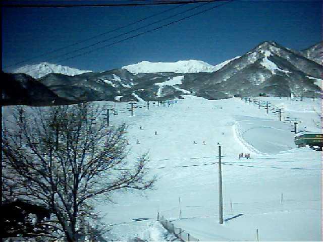 栂池高原スキー場 ライブカメラ